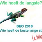 Degene met de beste lange staart wordt gevonden (zoekwoorden anno 2016)!