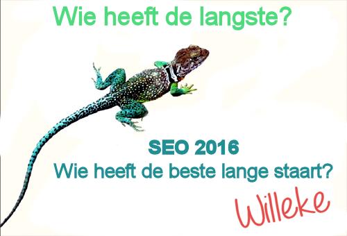 SEO Trends 2016: long tail zoekwoorden